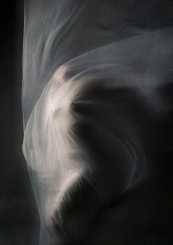 The Pain Echos - Rebecca Rose